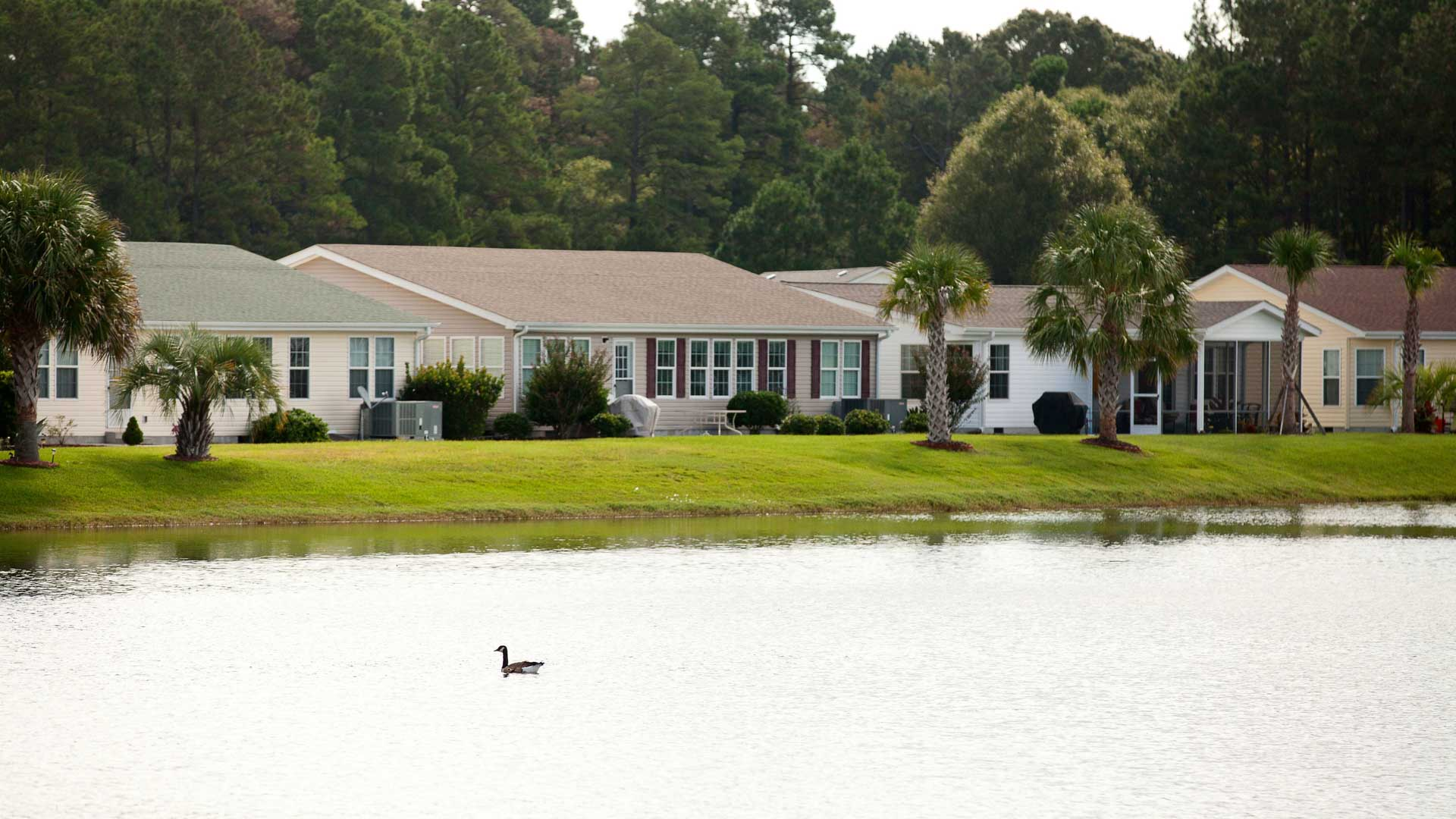 Lakeside Crossing 55+ Manufactured Homes Community Lakefront Residences in Conway, SC